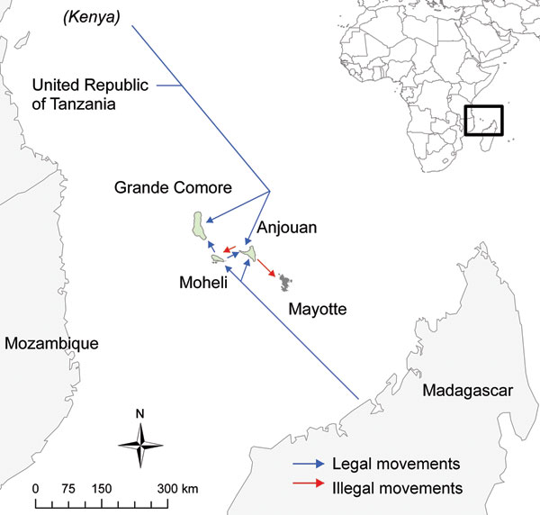 Potential legal and illegal movements of animals around the Comoros and Mayotte.