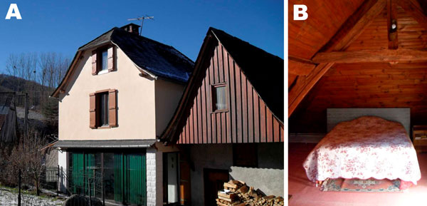Bat-infested home in Astien, southwestern France, in the Ariège region of the Pyrenees Mountains. Argas vespertilionis ticks were collected from the floor of the attic, which had been converted into bedrooms (right).