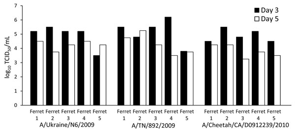 Virus concentration (50% tissue culture infectious dose) in nasal secretions of 3 groups of ferrets (5 animals/group) experimentally infected with different strains of pandemic (H1N1) 2009. In all 3 groups, viral shedding was detected on days 3 and 5, with the virus being cleared by day 7. NW, nasal wash.