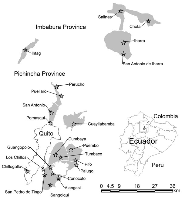Probable extent of highland valley malaria incidence (shaded areas) during the early 1940s in Ecuador. Stars indicate approximate location of original towns to which malaria was reported as endemic, judged by the presence of the historical town square in Google Earth satellite imagery (Google, 2010). Shading was determined by the valley bottom with an affected town up to an altitude of 2,500 m. Inset: Approximate location of region in Ecuador. Data were obtained from Levi Castillo (17), Montalva