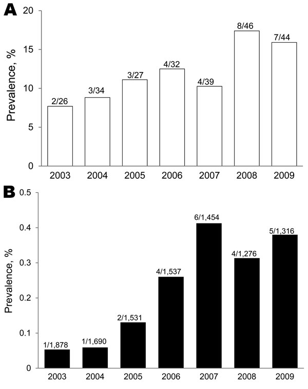 Annual prevalence of amebic colitis in persons with or without HIV infection, Japan, 2003–2009. A) HIV-positive patients. B) HIV-negative patients. Values above bars are no. positive/no. tested.