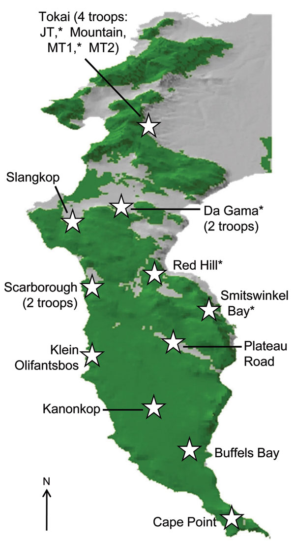 Cape Peninsula in South Africa, showing position and name of the different regions that have baboon troops. Baboons were sampled from those regions denoted by an asterisk. Green denotes natural land, and gray shows the current extent of urban and agricultural land on the Peninsula.