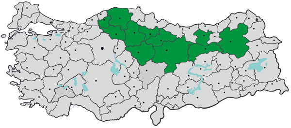 Provinces in Turkey where the study was conducted and to which Crimean-Congo hemorrhagic fever virus is endemic (green), January–April 2009. Gray indicates other provinces and dots indicate major cities.