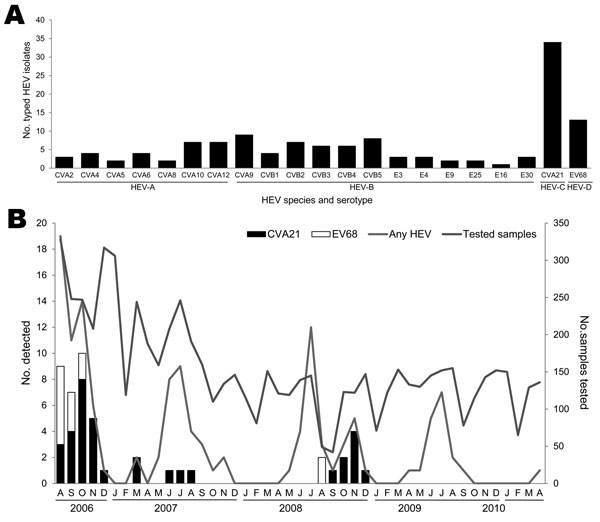 Frequency of human enterovirus (HEV) serotypes detected among adult patients by using sequence analysis of a partial viral protein 1 gene, in Beijing, People's Republic of China, August 2006–April 2010. A) Number of patients detected for each HEV serotype; B) Seasonal distribution of the HEVs in adults with acute respiratory tract infection. Numbers of samples tested in each month during the study period are shown on the right-side y-axis. CV, coxsackievirus; E, echovirus; EV, enterovirus.