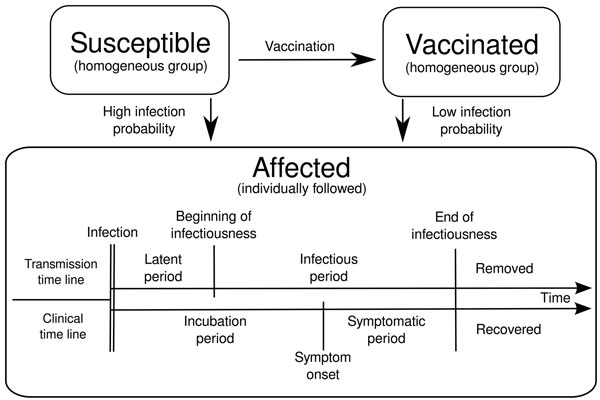Schematic diagram of stochastic outbreak models to estimate the expected size of a measles outbreak in a school, depending on the delay between detection and implementation of a complete school outbreak-response vaccination campaign. Susceptible persons (susceptibles) become affected if they are infected and become vaccinated after vaccination is implemented. Vaccinated persons (vaccinated) can also be infected but with lower probability than susceptible persons. Those who become affected are fo