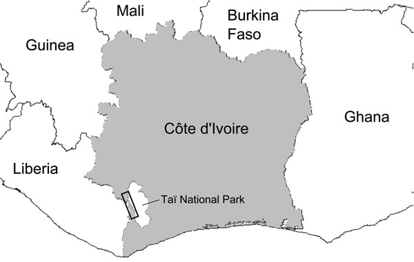Sampling zone in study of the origin of human T-lymphotropic virus type 1 in rural western Africa, 2006–2007. Taï National Park is indicated in white on the gray background of Côte d'Ivoire. The black rectangle overlapping Taï National Park defines a zone encompassing the 18 villages where study participants resided. Village names and the number of participants are as follows: Daobly (38), Djereoula (31), Djiboulay (40), Gahably (55), Gouléako (37), Goulégui-Béoué (55), Kéibly (90), Pauléoula (2
