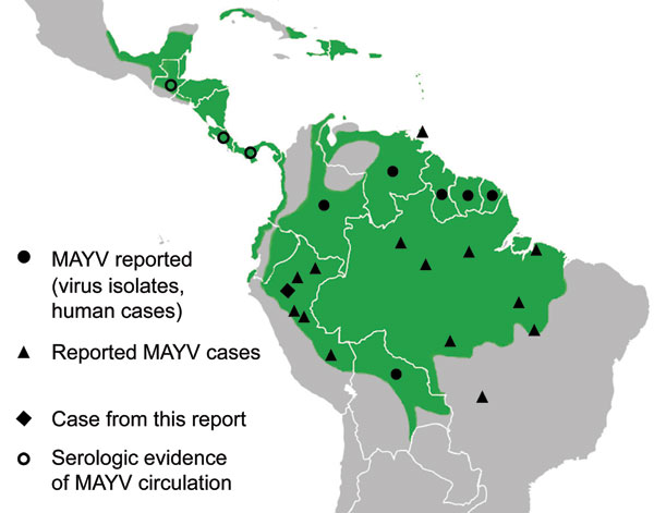 Distribution of Mayaro virus (MAYV) in the Central and South America (3,5–7).