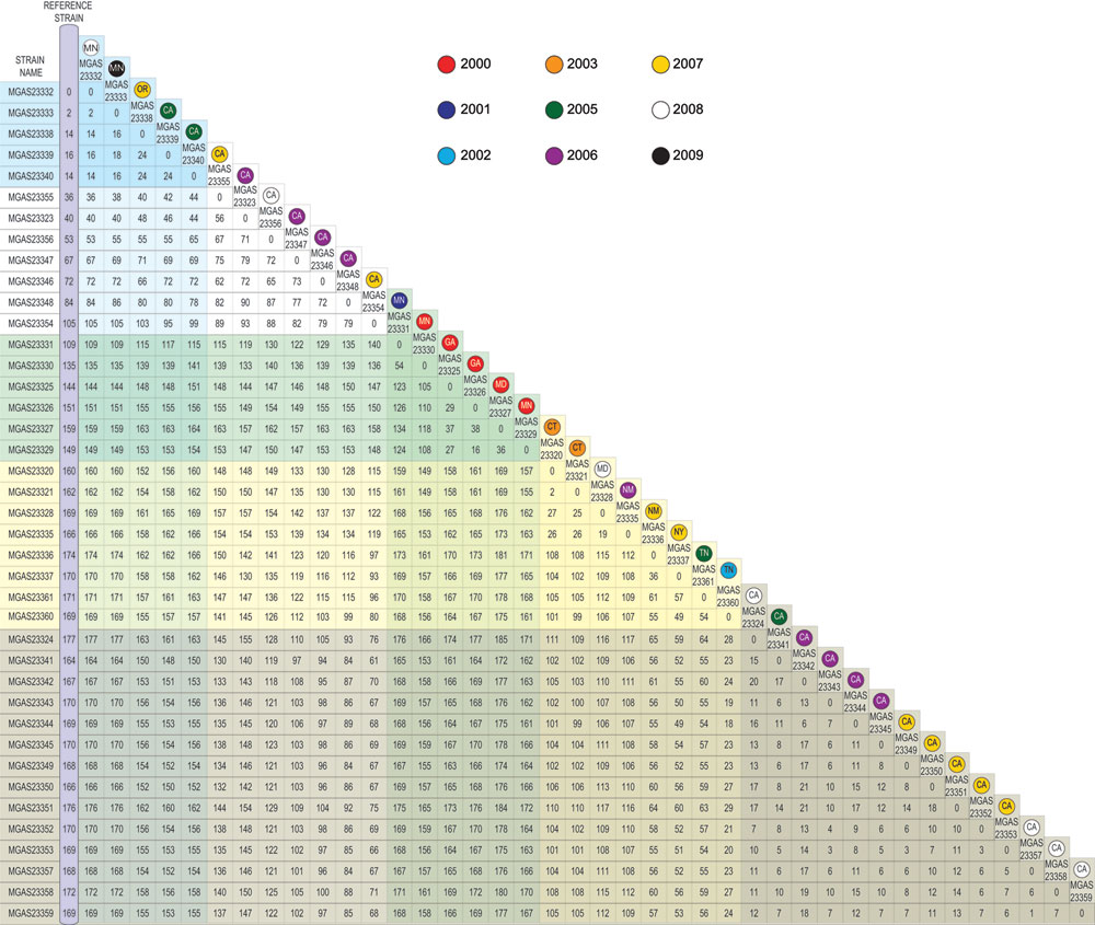 Matrix displaying total number of core genome single-nucleotide polymorphisms separating each individual strain from any other. State and year of isolation are provided for each individual strain. CA, California; CT, Connecticut; GA, Georgia; MD, Maryland; MN, Minnesota; NM, New Mexico; NY, New York; OR, Oregon; TN, Tennessee.