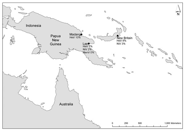 Sampling locations and henipavirus antibody prevalence, Papua New Guinea 1996–1999, among 182 wild-caught fruit bats from Madang (1996), New Britain (1997), and Lae (1999), Papua New Guinea. HiV, Hendra virus; NiV, Nipah virus; MenV, Menangle virus.