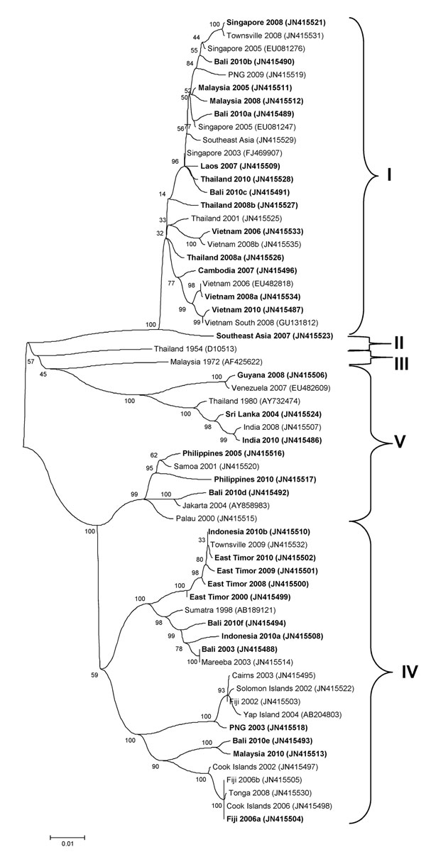 Phylogenetic tree showing the relationship of dengue viruses, serotype 1, imported into Queensland, Australia, 2001–2010, based on sequencing of the envelope gene. Viruses are designated according to reported origin and GenBank accession number, and imported cases are shown in boldface. Genotypes are indicated on the right. Scale bar indicates nucleotide substitutions per site.