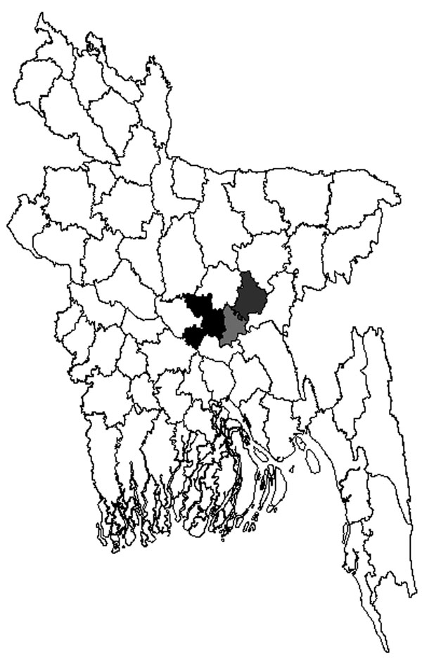 Three districts of Bangladesh from which samples were tested for Arctic/Arctic-like rabies virus and strains were found, 2010. Black, Dhaka District, strains BDR1, BDR3, and BDR6; light gray, Narayanganj District, strains BDR4, BDR5, and BDR7; dark gray, Narshingdi District, strain BDR2.