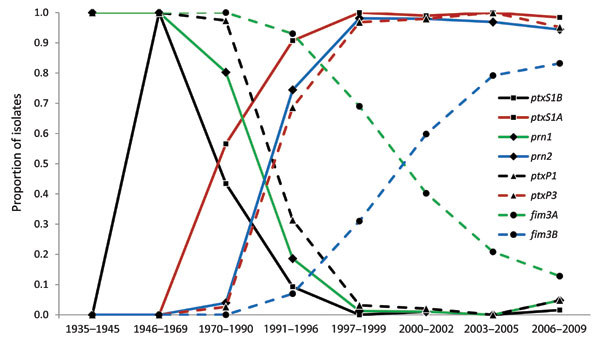 Transitions of frequency (by proportion of all isolates tested) of dominant alleles for each multilocus sequence typing (MLST) type target within the Bordetella pertussis population, United States, 1935–2009. The previous dominant type is denoted by a solid line, with the new dominant type denoted by a dashed line of the same style. The dashed lines of prn2 and ptxP3 overlap with each other and multilocus variable number tandem repeat analysis (MLVA) type 27 (Figure 6), which suggests they arose