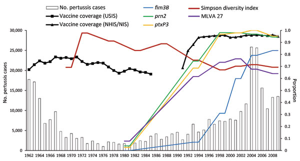 Comparison of number of pertussis notifications, proportion of vaccine coverage, and proportion of dominant multilocus sequence typing alleles and multilocus variable number tandem repeat analysis (MLVA) type 27 among a random selection of 661 isolates, United States, 1935–2009. Bars indicate case notifications; lines indicate 2-point moving average distributions of frequency for the time periods assigned in this study. Vaccine coverage data were collected for the United States Immunization Surv