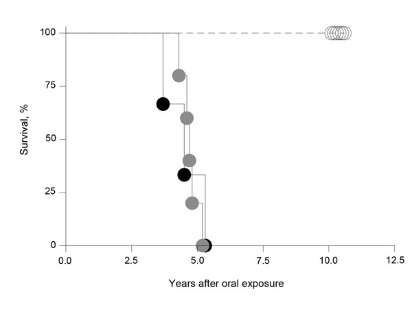 Percentage macaques surviving after oral inoculation brain material with or without (mock) bovine spongiform encephalopathy (BSE)–-inducing agent. Macaques exposed to 5 g (gray circles) or 16 g BSE (black circles) on 1 occasion and mock controls (open circles) are shown. The median incubation times for those given 16 g and 5 g BSE each was 4.7 years and 4.6 years, respectively. The difference was statistically not significant.