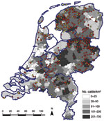 Thumbnail of Geographic distribution of dairy herds sampled in study of Schmallenberg virus seroprevalence with positive results (>1 animals sampled tested seropositive; red dots) and negative results (all animals sampled tested seronegative; yellow dots), the Netherlands, 2011–2012. Cattle density is indicated by gray shading; blue outlines denote regional borders.