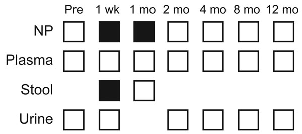 Samples tested for TSV (trichodysplasia spinulosa polyomavirus) during May–June 2009 from patient 4001, a 13-year-old heart transplant recipient at St. Louis Children's Hospital, St. Louis, Missouri, USA. Samples tested at each time point are indicated by open squares. Black squares represent positive samples. NP, nasopharyngeal.