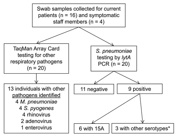 Respiratory pathogen carriage survey related to Streptococcus pneumoniae serotype 15A outbreak in a pediatric psychiatric hospital, Rhode Island, USA, December 25, 2010–January 31, 2011, performed on Unit 1 patients (n = 16) and symptomatic staff (n = 4) during January 29–February 2. No visitors were screened for respiratory pathogen carriage. Nasopharyngeal (NP) and oropharyngeal (OP) swab specimens were taken from each participant. TaqMan Array Card (TAC) used to test for influenza A (H1 and H