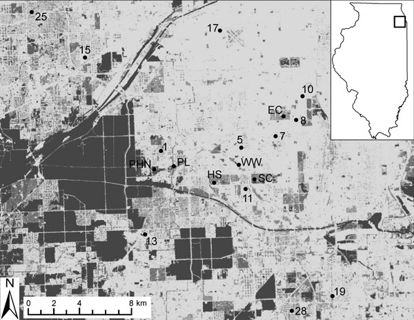 Map of field sites used for sampling birds in southwest suburban Chicago, Illinois, USA, 2005–2010. Sites consist of residential areas (numbered sites) and urban green spaces (lettered sites). Two residential sites not shown on the map (21 and 22) are ≈20 km north of this region. Box in inset map indicates location of sampling area. Main map shows the landscape gradient of impervious surfaces (National Land Cover Database 2001, US Geological Survey, Sioux Falls, SD, USA): dark gray areas are tho