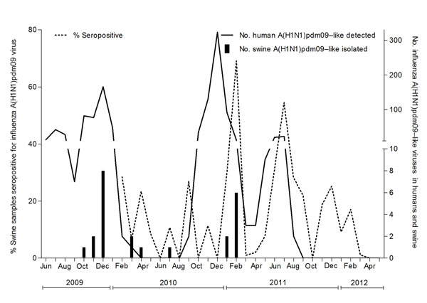 Distribution of percentage of swine serum samples seropositive for influenza A(H1N1)pdm09 viruses, by month, and number of A(H1N1)pdm09 viruses detected in humans and swine. The left y-axis represents the percentage of swine serum samples positive for A(H1N1)pdm09 virus. The right y-axis represents the number of swine A(H1N1)pdm09 isolated in the study and reverse transcription PCR–positive human A(H1N1)pdm09 detected in Sri Lanka.