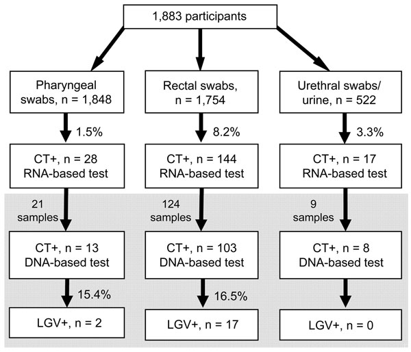 Flowchart of testing of 1,883 men who have sex with men for Chlamydia trachomatis (CT) and lymphogranuloma venereum (LGV) by RNA- and DNA-based assays, Germany, December 1, 2009–December 31, 2010. Gray shading indicates samples positive for CT that were sent for L genotyping. Most participants provided >1 type of sample.