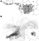 Thumbnail of A) Predicted geographic distribution in central and western Africa of suitable environments for monkeypox virus transmission on the basis of the Maxent algorithm (www.cs.princeton.edu/~schapire/maxent/). Gray shading represents suitable environmental conditions identified by the algorithm; circles indicate localities of monkeypox human cases used to build the ecological niche models. Stars indicate localities reported during the human monkeypox outbreak in southern Sudan in 2005. B)