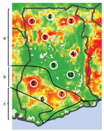 Thumbnail of Lassa virus risk map of Ghana showing 10 numbered study sites adapted from Fichet-Calvet and Rogers, Model 3 (1). Red areas indicate high predicted risk for Lassa fever and green areas indicate low predicted risk. Solid black lines and letters indicate vegetation zones: a) Guinea savanna woodland; b) moist semideciduous forest; c) tropical rainforest.