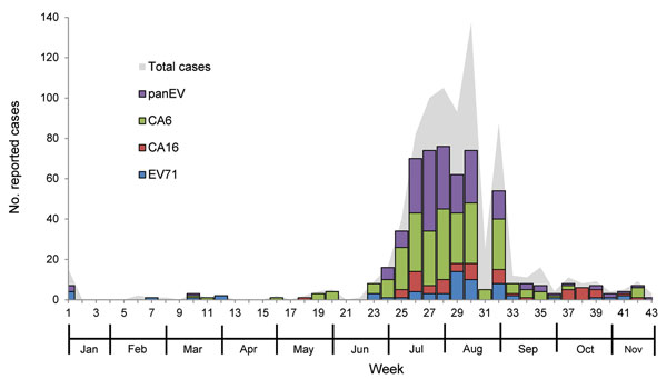 Weekly number of reported suspected cases of hand, foot, and mouth disease and herpangina during outbreak, Thailand, 2012. EV, enterovirus; CA6, coxsackievirus 6; CA16, coxsackievirus 16; EV71, enterovirus 71.
