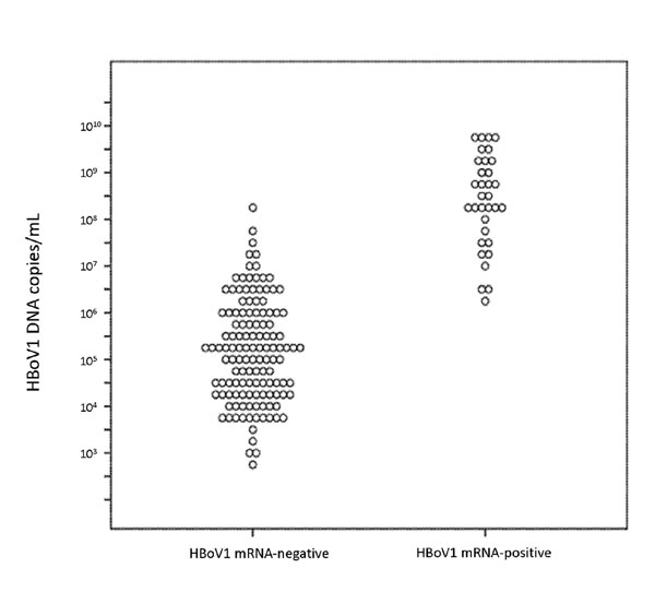 Distribution of human bocavirus 1 (HBoV1) DNA loads in nasopharyngeal aspirates either positive (n = 33) or negative (n = 128) for HBoV1 mRNA. Each dot indicates 1 sample.