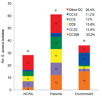 Thumbnail of Principal clonal complexes (CCs) among 125 isolates of Staphylococcus aureus from intensive care unit, France, 2011. HCWs, health care workers.