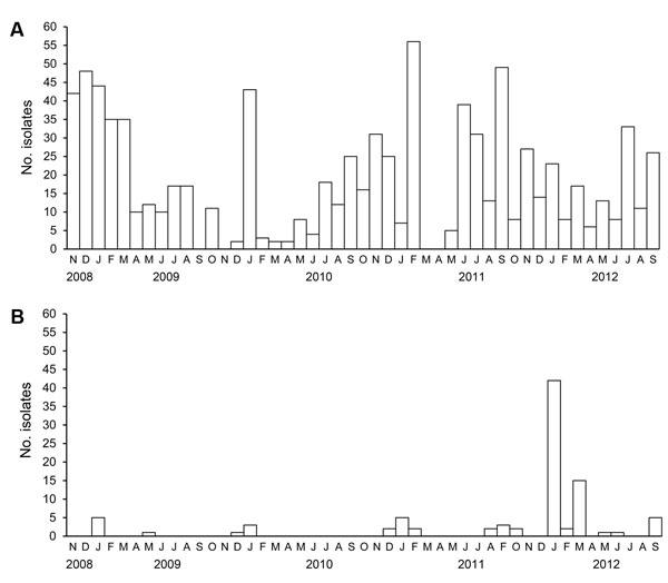Influenza virus surveillance in Bangladesh, November 2008–September 2012, showing the total number of avian influenza viruses isolated per month. A) Low pathogenicity subtype H9N2 viruses; B) highly pathogenic subtype H5N1 viruses.
