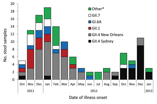 Norovirus genotypes identified in stool samples submitted by norovirus-positive callers to the foodborne illness hotline, Minnesota, USA, October 2011–January 2013. *Other genotypes identified: GII.4 Minerva, GI.3B, GII.3, GI.2, GI.7, GII.12, GI.4, GI.5, GII.6, GII.8