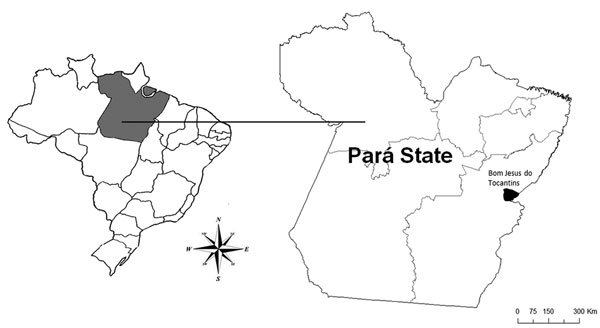 Bom Jesus do Tocantins County (black) in Pará State (gray), Brazil, where an outbreak of bovine vaccinia occurred in 2010.