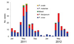 Thumbnail of Number of confirmed malaria cases caused by various Plasmodium spp. protozoa in 4 counties of Yunnan Province, China, along the China–Myanmar border, January 2011–August 2012. Mixed, P. vivax/P. falciparum infection.