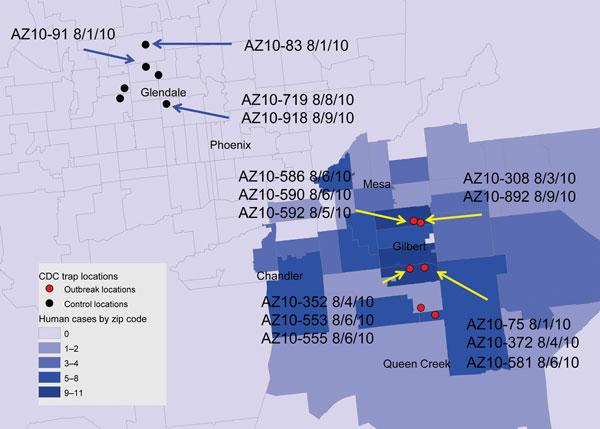 West Nile Virus Texas Zip Code Map.Figure 1 Co Circulation Of West Nile Virus Variants Arizona Usa