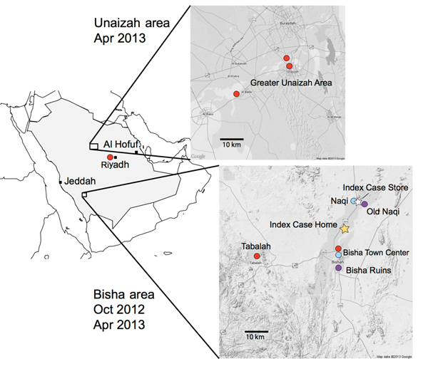 Bat sampling sites and locations of home and workplace of index case-patient with Middle East respiratory syndrome, Bisha, Saudi Arabia.
