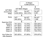 Thumbnail of Flowchart of participants in study of short-term malaria reduction by single-dose azithromycin (AZT) during mass drug administration (MDA) for trachoma, Tanzania, January 12–July 21, 2009. AZT MDA (village-wide) and study panels show that 90% of persons who were intended to receive AZT received this drug. Total study participants with ≈1,000 in each group, shown in the study panel, contributed samples that are shown in the real-time PCR panel at each sampling time. Percentages in th