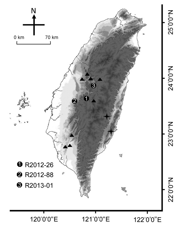 Collection sites of rabies-positive Taiwan ferret badgers (TWFB), Taiwan. Solid circles marked with 1–3 represent the collection sites of the first 3 rabies-positive animals. Triangles represent the collection sites of other rabies virus (RABV) sequences included in this study. Crosses represent the most diverged lineages of rabies virus from Taiwan ferret badgers (TWFB, TW1614, and TW1955), shown in Figure 5, panel B, Appendix, and the easternmost cross represents the isolate from a shrew, TW19