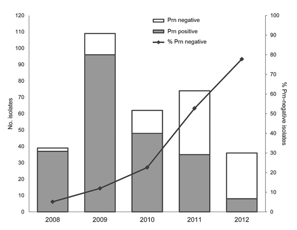 Number and percentage of pertactin (Prn)–negative Bordetella pertussis isolates in Australia, 2008–2012. During this period, 320 B. pertussis isolates obtained in New South Wales, Queensland, South Australia, Victoria, and Western Australia were identified as expressing prn or not expressing prn by using Western immunoblotting. The increasing percentage of prn-negative isolates each year during 2008–2012 was 5%, 12%, 23%, 53%, and 78% respectively. Data for individual states and years can be fou