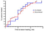 Thumbnail of Survival analysis curve of cumulative healing for patients with Mycobacterium ulcerans infection who were co-infected with Mansonella perstans nematodes compared with those who had M. ulcerans monoinfection, Ghana, August 2010–December 2012. No difference in cumulative healing was found between the 2 groups (p = 0.93 by log-rank test).