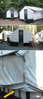Thumbnail of Regular and signature tent cabins, Yosemite National Park, summer, 2012. A) Outside view of a regular tent cabin. B). Outside view of a signature tent cabin. C) Inner layer of foam insulation underthe canvas of a signature tent cabin.