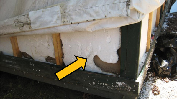 Damage from rodents tunneling in the foam insulation of a signature tent cabin Yosemite National Park summer 2012. & Figure 4 - Hantavirus Infections among Overnight Visitors to ...