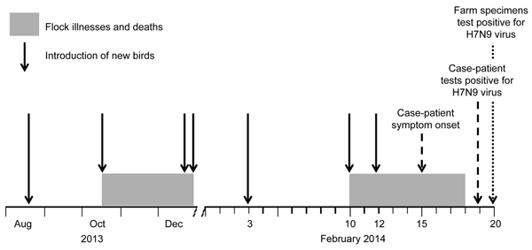 Timeline of introduction of new birds to the farm of the case-patient with influenza A(H7N9) virus infection in Jilin Province, China, 2013–2014. Dates of illnesses and deaths among bird flock on farm, the case-patient's symptom onset, and confirmed testing results are indicated.