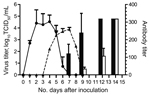 Thumbnail of Results of virus titration and hemagglutination-inhibition assay for the cohort of cats inoculated with equine influenza A(H3N8) virus and the contact cohort. Virus shedding was titrated in MDCK cells. Virus titer is shown as log10 median tissue culture infective dose (TCID50) (solid line and circles, inoculated cohort; dashed line and triangles, contact cohort). Hemagglutination-inhibition assay of serum samples was conducted by using 1% horse erythrocytes (black bars, inoculated;