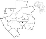 Thumbnail of Four rural (Fougamou and Lastourville), semiurban (Koulamoutou), and urban (Franceville) locations in Gabon where children <15 years of age were tested for Rickettsia felis infection, April 2013–January 2014. Percentages in parentheses indicate the prevalence of R. felis infection among febrile children. Inset shows location of Gabon on the Atlantic Coast of Africa.