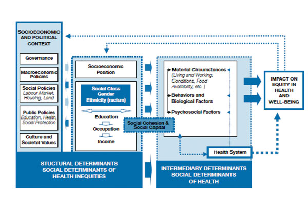 Framework for considering social disparities of health determined by the Commission on Social Determinants of Health, World Health Organization (3).