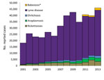 Thumbnail of US cases of Lyme disease, ehrlichiosis, anaplasmosis, babesiosis, and spotted-fever group rickettsioses reported to the Centers for Disease Control and Prevention, 2001–2013. Counts include confirmed and probable cases, according to the case definition in effect in each year. Anaplasmosis cases were reported as human granulocytic ehrlichiosis before 2008. Ehrlichiosis refers to infections caused by Ehrlichia chaffeensis, E. ewingii, and undetermined species. *Babesiosis was first de