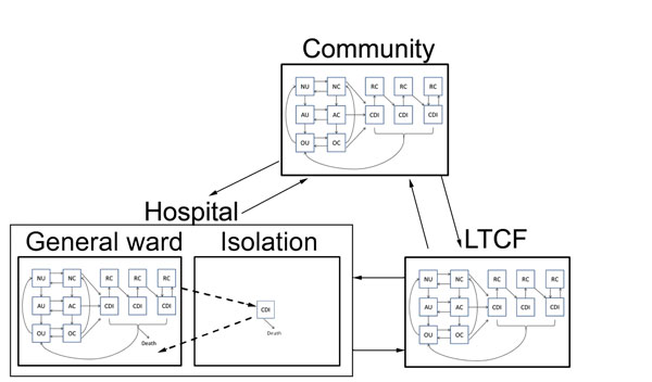 Transitions between settings (hospital, LTCF, and the non–healthcare community) for model structure of Clostridium difficile infection (CDI). Transitions were parameterized at demographically calibrated, age-specific rates. Hospitalized patients with CDI who were given a diagnosis are subject to enhanced isolation protocols that reduce transmission. All hospitalized CDI patients are discharged at a slower rate than non–CDI patients, which reflects longer hospitalization attributable to CDI. N, p