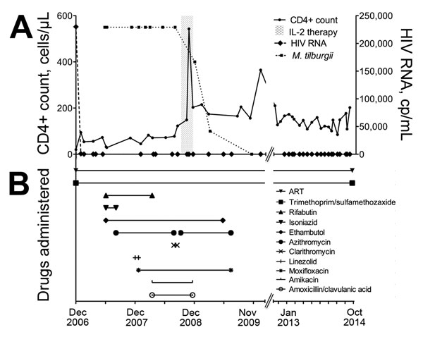 Laboratory findings and drug treatment regimen over time for an HIV-infected patient with disseminated Mycobacterium tilburgii infection, December 2006–October 2014. Top graph shows CD4+ T cell count, HIV viral load, and use of interleukin-2 (IL-2; gray shading). Bottom graph shows antimycobacterial drug combinations, antiretroviral therapy (ART), and trimethorprim/sulfamethoxazole prophylaxis.