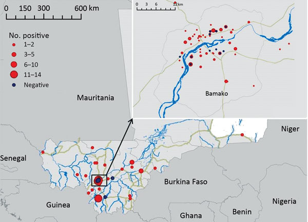 Locations of origin for 100 specimens analyzed in this study (95 with positive results and 5 with negative results) submitted for rabies virus diagnosis, Mali, 2002–2013. Inst shows closer view of the area near the capital city of Bamako.