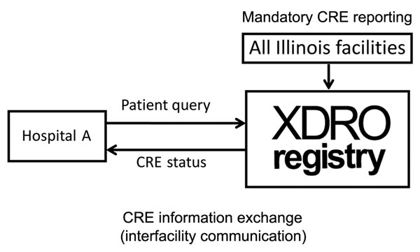 Conceptual framework of the XDRO registry, Illinois, USA. XDRO, extensively drug-resistant organism.